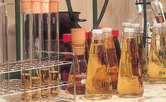 酢 商品開発
